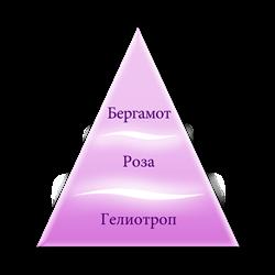 Пирамида ароматов серии Белый иней