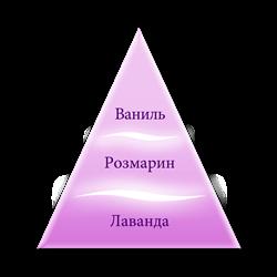 Пирамида ароматов серии Лаванда