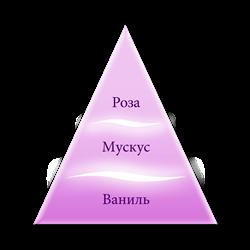 Пирамида ароматов Только любовь